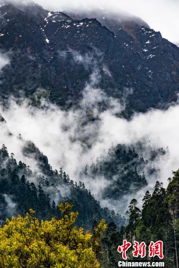 西藏林芝5年落实近10亿元生态环保专项资金