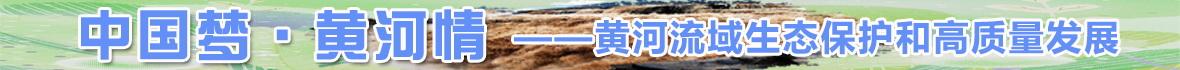 黄河情banner.jpg