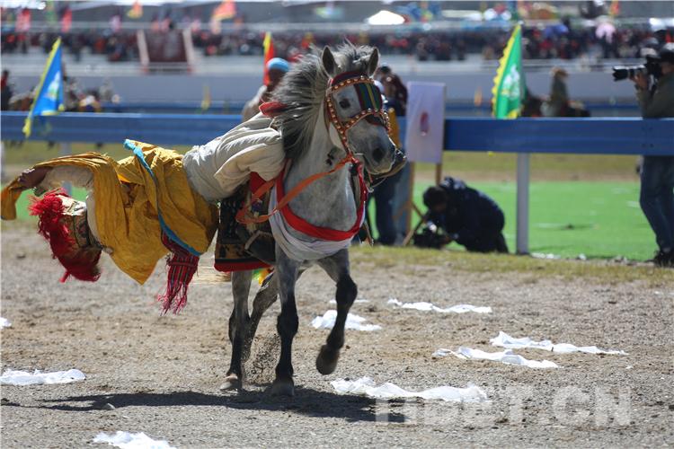 藏北儿女欣逢盛世 载歌载舞迎接2019羌塘恰青格萨尔赛马艺术节