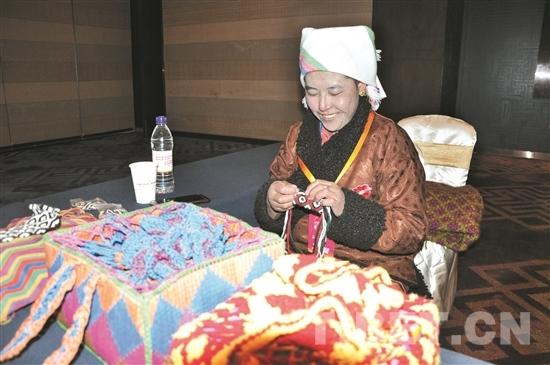 """西藏形成了具有高原特色的""""双创新""""发展环境"""