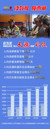 """中国宝藏""""西藏"""""""" 富裕的藏族人消费结构更多"""