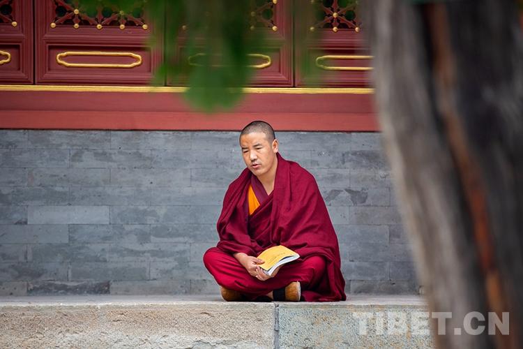 半小时辩论考试!藏传佛教僧侣进考场前都在做什么?