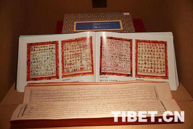 藏医药走上国际舞台 西藏藏医药事业发展显著