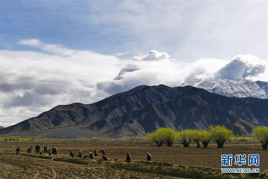 (经济)(1)西藏日喀则:农民春耕忙