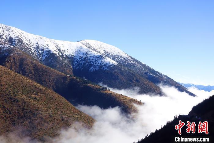 西藏吉塘镇现壮美云海穿行其间宛入仙境