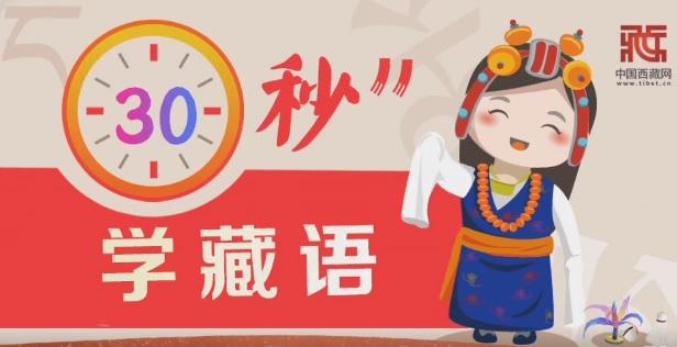 30秒学藏语丨.jpg