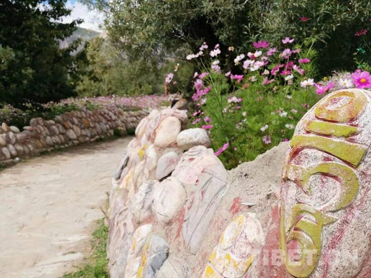 邂逅有1300余年历史的藏文创始人吞米桑布扎故居