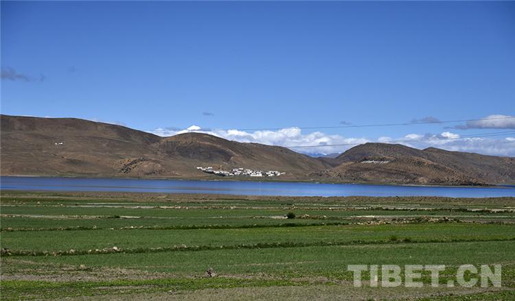 """网评:建设美丽西藏 呵护地球""""第三极"""""""