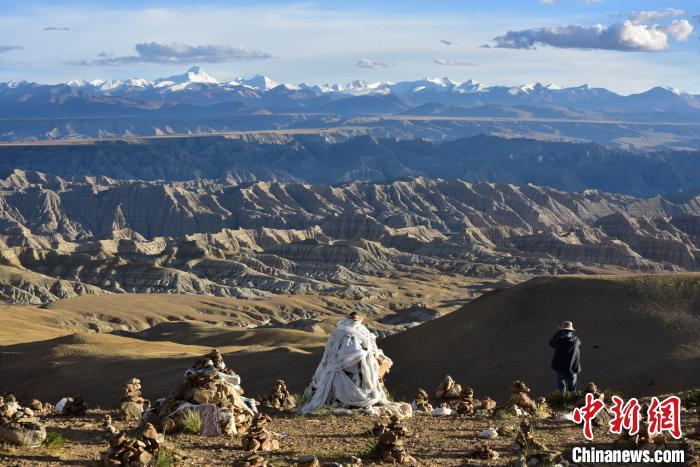 植物化石揭示了青藏高原西端的干旱化过程