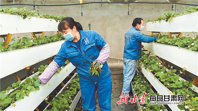 http://www.edaojz.cn/jiaoyuwenhua/477529.html