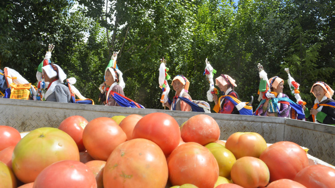 """拉萨市达孜县农牧民举行一年一度的""""望果节""""。.jpg"""