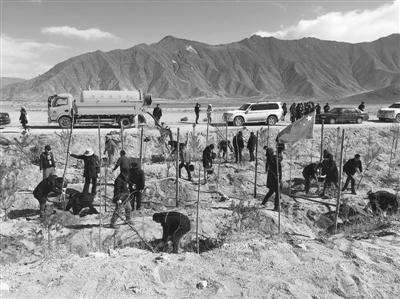 今年西藏拉萨计划完成造林绿化17.2万亩