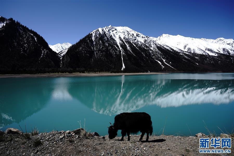 (环境)(1)美丽然乌湖