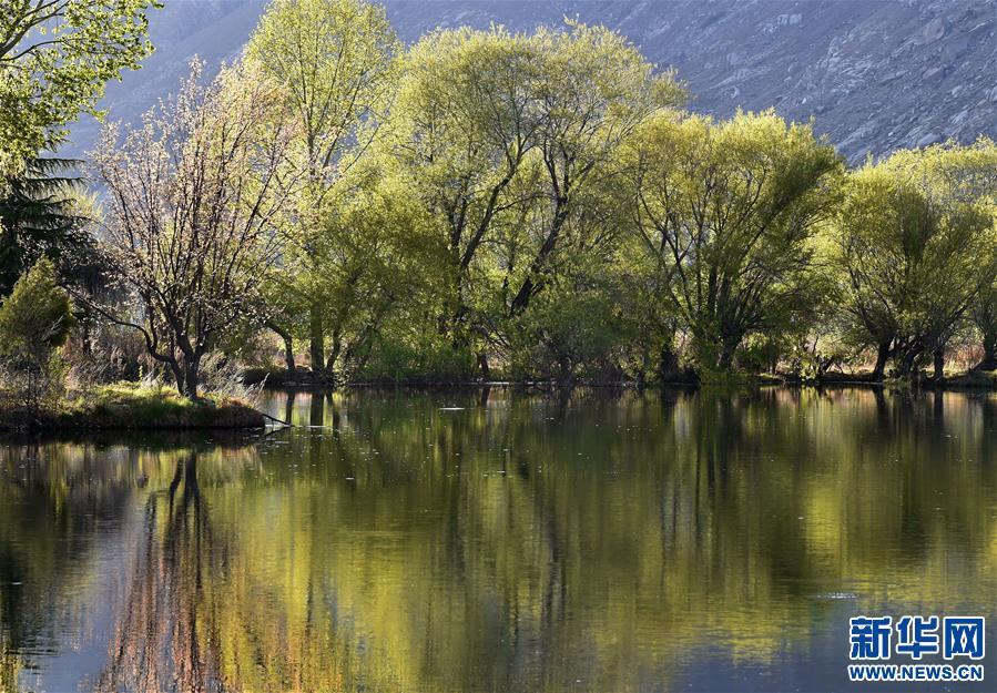 (美丽中国)(1)拉鲁湿地:城市湿地风景如画