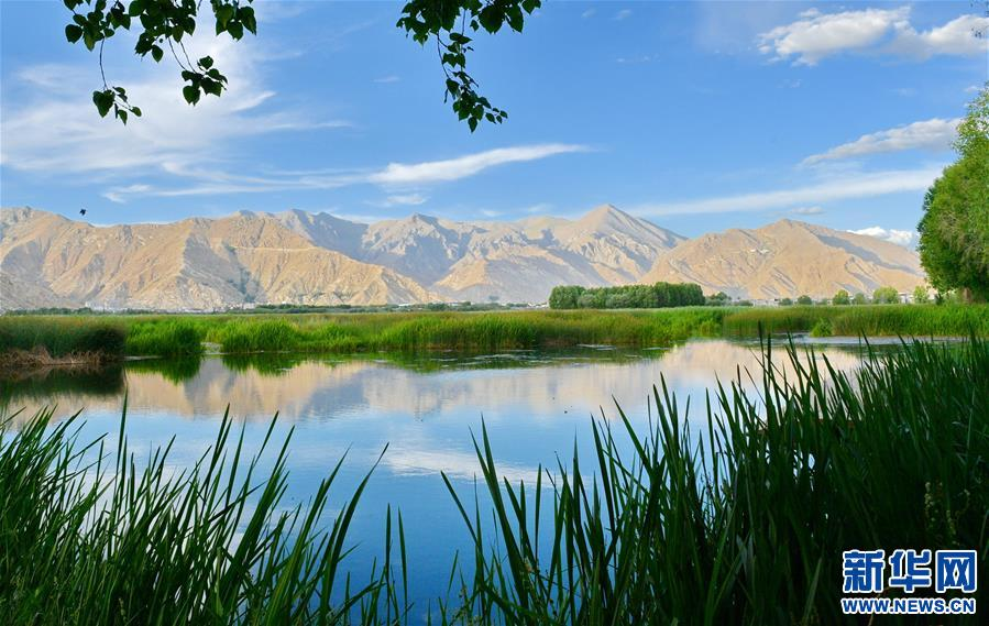 (新华视界)(1)拉鲁湿地风光美