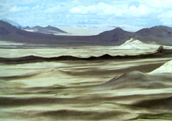 阿里地区的荒漠